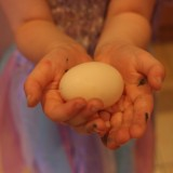 The first egg from our backyard chickens